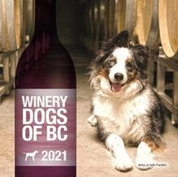 Winery Dogs 2021