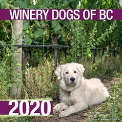 Winery Dogs 2020